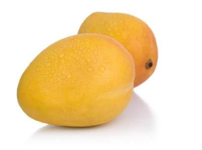 Bombay Mango